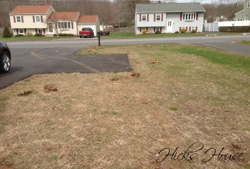 Hicks House | Rock Removal