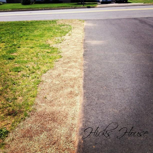 Lawn Wars | Hicks House
